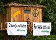 greenpeace activism
