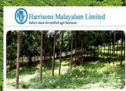 hml plantations