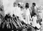 rajiv, rahul, priyanka, varun at indira gandhi's funeral